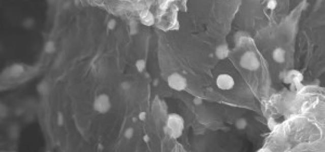 CalBattery y CALEB unen sus fuerzas para producir baterías con ánodo de silicio-grafeno