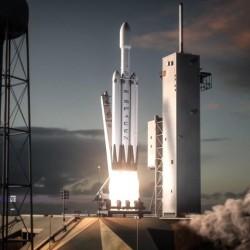 Elon Musk y Lisa Simpson se enzarzan en una discusión