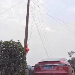 Como no cargar un Tesla Model S, aunque la recarga sea gratuita