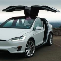 Encuesta: ¿Debería instalar Tesla las puertas tipo ala de gaviota en el Model Y?