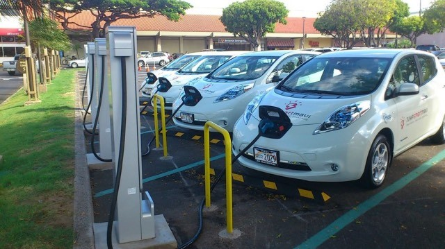 Battery_Charger-leaf-hawai