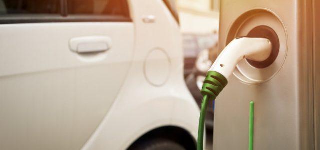 EMAYA, empresa municipal del agua de Palma de Mallorca, renueva su flota con 18 coches eléctricos