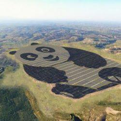 Lo Mejor de la Semana en DiarioRenovables. Resultados de la nueva subasta renovable en España, planta fotovoltaica con forma de panda…