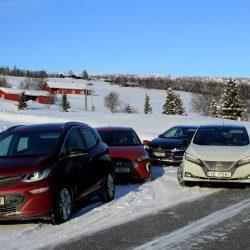 La Asociación Noruega de Vehículos Eléctricos compara 5 coches eléctricos en condiciones invernales